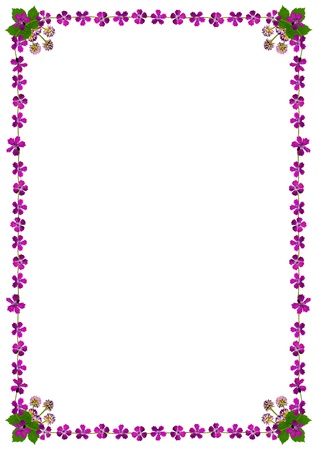 Frame with purple flowers on white background in DIN format