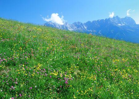 kaiser: Mountain landscape in the Wilder Kaiser region of Austria.