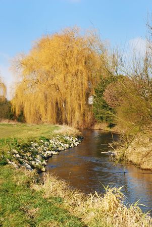 Wheeping willow at a river in Bavaria Stock Photo - 2958614