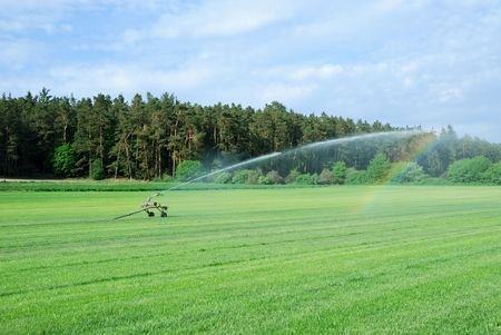 Watering a green grass field photo