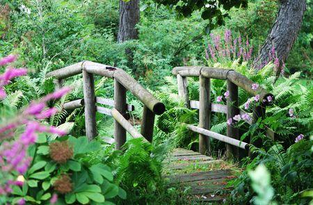 shady: Bridge in a shady park Stock Photo