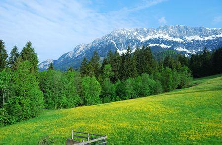 Wilder Kaiser mountains in the alps of Austria Stock Photo