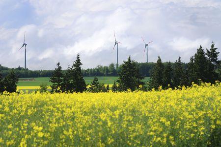 Wind energy and a rape field photo