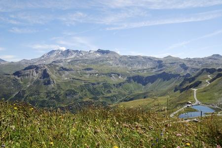 Flower meadow in Austria at the Grossglockner Hochalpenstrasse (high alpine road). Stock Photo - 8746531