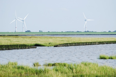 reclamation: Land reclamation in the Wadden Sea (Schob�ll, Germany)