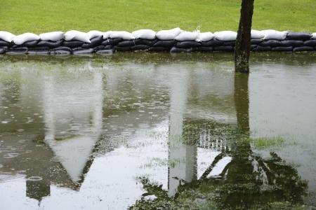 sandbag: Flooded garden with sandbags prhobiting further damage