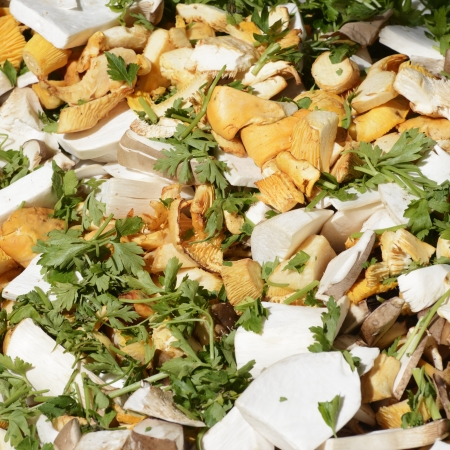 herbage: Various sliced mushrooms with parlsey and other herbage sold at the market Stock Photo