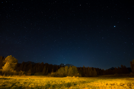 Natural night landscape under starlight Stock Photo