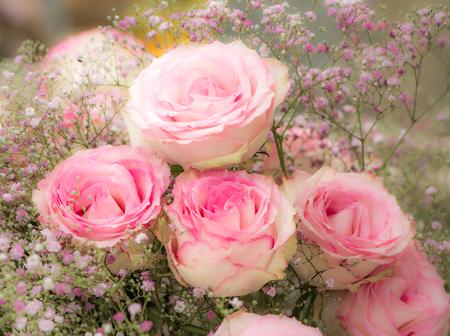 Flor deco con rosas rosas - enfoque suave Foto de archivo - 85448339