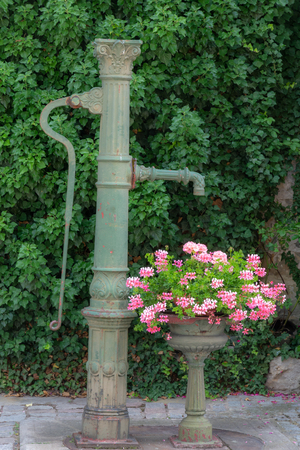Vintage pump well and a flowers