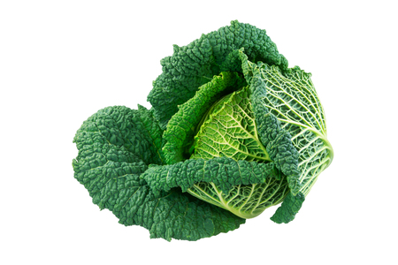 Closeup of an isolated fresh savoy cabbage head