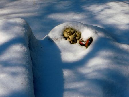 winterday: The winter lurks