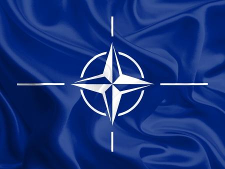 Waving Fabric Flag of NATO