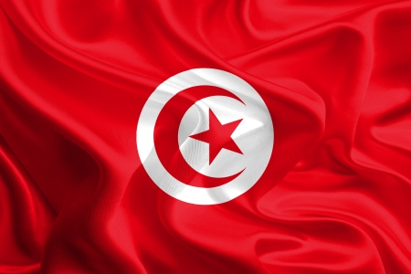 Waving Fabric Flag of Tunisia Stock Photo - 16963558