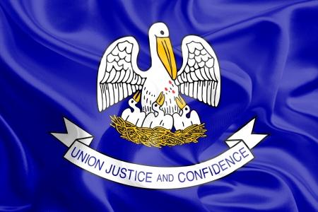 USA State Flags   Waving Fabric Flag of Louisiana