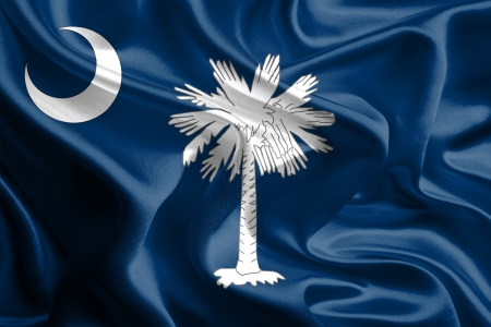 USA State Flags   Waving Fabric Flag of South Carolina