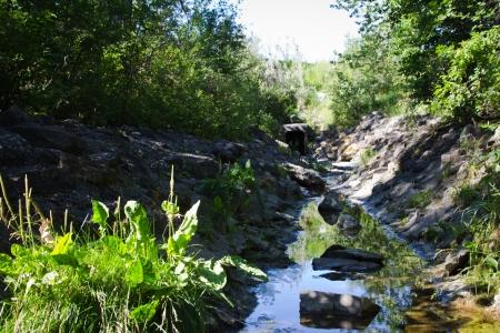 provincial forest parks: Fish Creek Park, Calgary Alberta  Canada