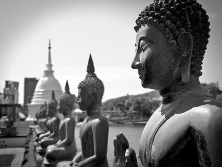 colombo: Famous sitting Buddha statues in the Seema Malaka Temple in Colombo  This is situated on Beira Lake and is part of the Gangaramaya Buddhist Temple Complex