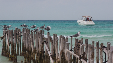 boat bridge and and a boat on Cancun beach photo