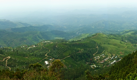 Famous green tea plantation landscape view from Lipton s Seat, Haputale photo