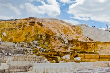Colorful limestone travertine deposits at mammoth Hot Springs in Wyoming s Yellowstone National Park   photo