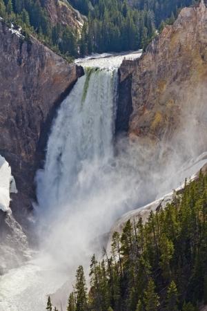 lower yellowstone falls: Yellowstone River Lower Falls, Yellowstone National Park, Wyoming, United States
