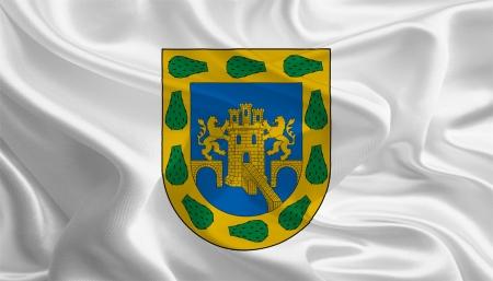 federal district: Mexican State Flags  Waving Fabric Flag of Distrito Federal  Ciudad de México