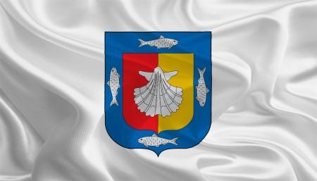 sur: Mexican State Flags  Waving Fabric Flag of Baja California Sur
