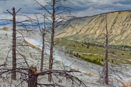 Colorful limestone travertine deposits at mammoth Hot Springs in Wyoming s Yellowstone National Park Stock Photo - 20183114