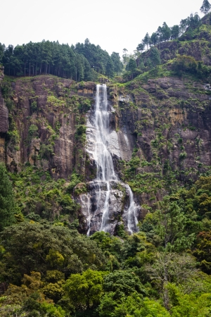 Bambarakanda Waterfalls, The tallest waterfall in Sri Lanka photo