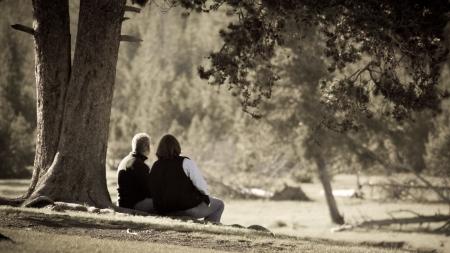공원에서 오래 된 커플