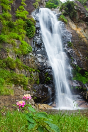 Long exposure shot of a beautiful waterfall with flowers photo