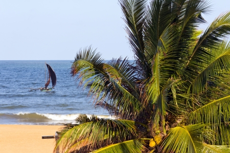 Beautiful tropical beach in Sri Lanka photo