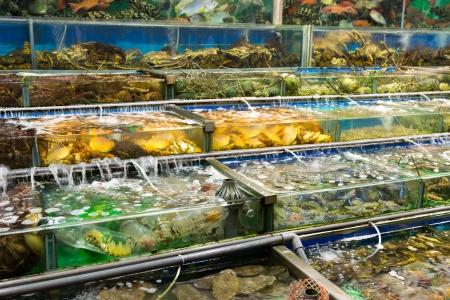 Fresh seafood restaurants in Hong Kong, China Stock Photo - 23099747