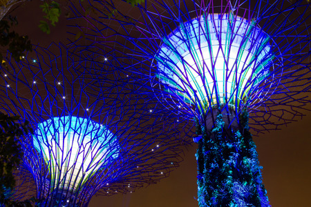 Reclaimed: Light show of Supertree at Gardens by the Bay  Spanning 101 hectares of reclaimed land in Singapore, adjacent to the Marina Reservoir