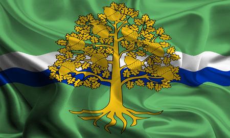 council: Flag of Nottinghamshire Council