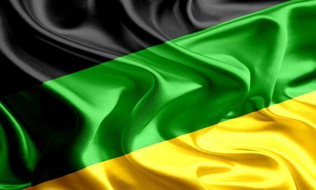 national congress: African National Congress Flag