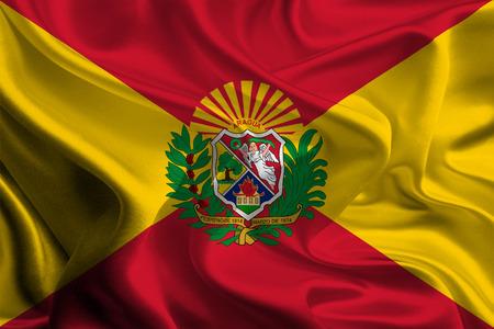 Flags of Aragua State, Venezuela photo