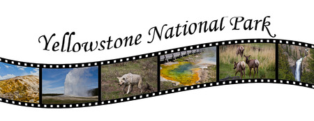Travel Photo Film Strip of Yellowstone National Park, WY, USA