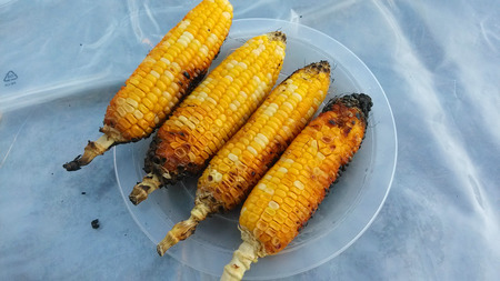 barbecued: Barbecued Corn