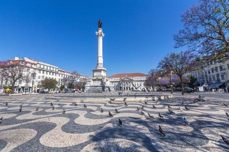 pidgeon: Rossio Square in Lisbon, Portugal.
