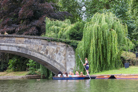punting: Punting in summer on the river Cam. There are several companies on the Cam operating tours and hiring punts to visitors.