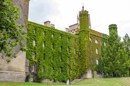 ivy wall: Ivy wall of St Johns College in the University of Cambridge in England. The college was founded by Lady Margaret Beaufort.