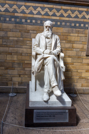 contributions: Statue of Charles Darwin by Sir Joseph Boehm in the main hall of the Natural History Museum in London. He was best known for his contributions to evolutionary theory.