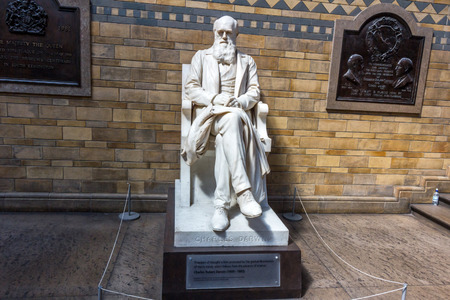 evolutionary: Statue of Charles Darwin by Sir Joseph Boehm in the main hall of the Natural History Museum in London. He was best known for his contributions to evolutionary theory.