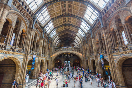 Interior view of the Natural History Museum in London, England. It is a museum exhibiting a vast range of specimens from various segments of natural history. Editorial