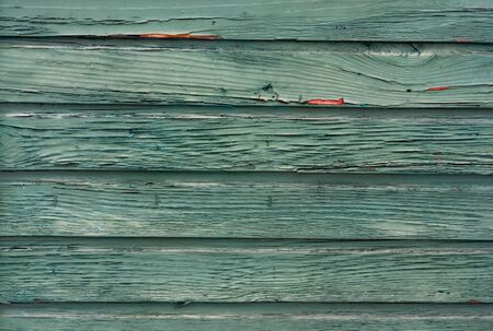 Close-up  shot of weathered   wooden  wall boards with shabby peeling  green  paint . Stockfoto