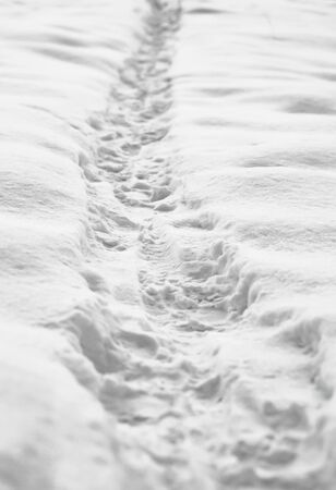 Footprints of boots in the snow .Walking on snow .
