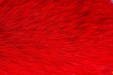 Natural fox fur scarf painted red . Fashion accessory for women .