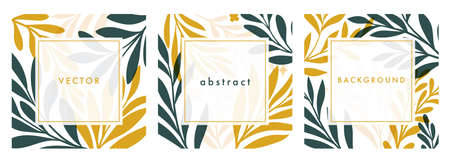 Set of square template with botanical elements. Modern vector floral illustration for print design, social media post, web ads. Abstract plant background.